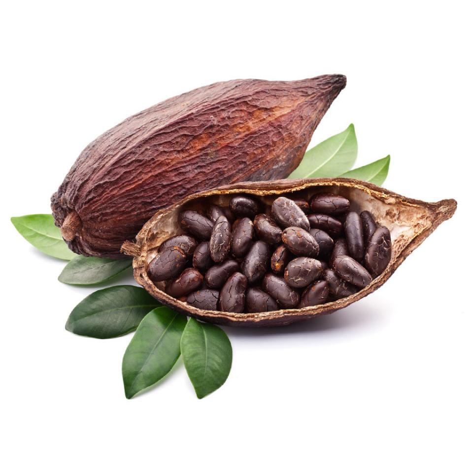 ekstrakt-z-kakaowca