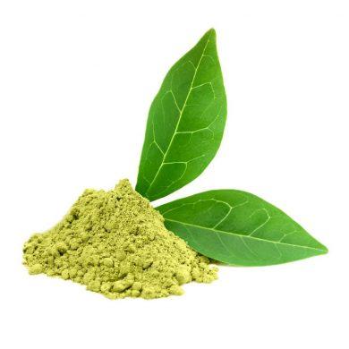ekstrakt-zielona-herbata